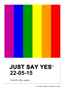 marriage equality referendum